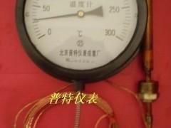 专业生产WTZ(Q)280压力式温度计