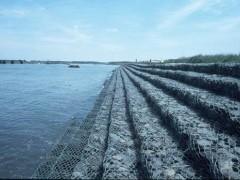 供应石笼网