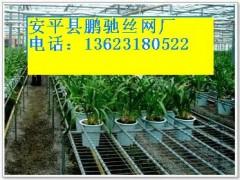 辽宁大连苗床网,北京温室苗床网