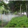 喷雾工程 造雾工程