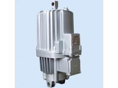ED-80/6电力液压推动器