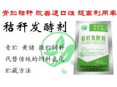 青储玉米秸秆做饲料操作技术方法