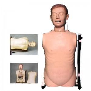 鼻胃管与气管护理模型