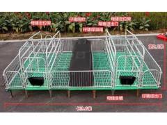 福临批发 双体母猪产床 猪用产仔床 养猪设备大全