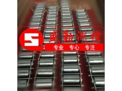 碳钢链码+LM皮带秤链码+不锈钢链码LM30kg 40kg