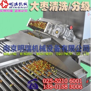 南京明瑞滚杠式果品分级设备