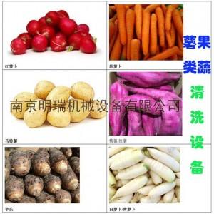 薯类加工设备——薯类产品清洗设备
