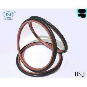 广东密封件阶梯组合密封件DSW密封件生产厂家