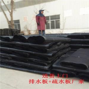 HDPE供应亳州地下室排水板芜湖车库滤水板