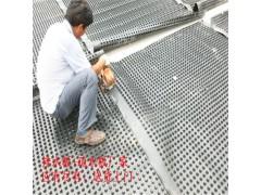 广安车库凹凸透水板(片材)蓄排水板