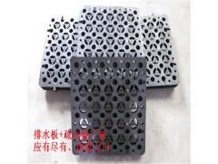 惠州3公分2公分蓄排水板玉林车库排水板