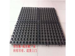 鞍山塑料透水排水板卷材疏水板型号