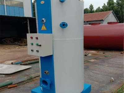 佳木斯立式燃气蒸汽锅炉