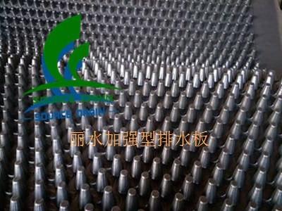丽水3公分加强型排水板(国标排水板)