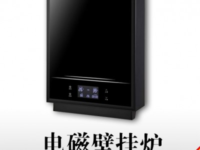 5KW-10KW取暖+热水一机共享家用电磁采暖炉