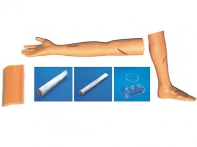 外科综合技能训练组合模型