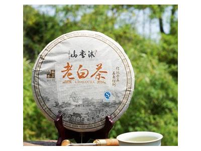 福鼎(老白茶)