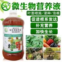 黄精白芨重楼吴茱萸党参中药材专用肥料