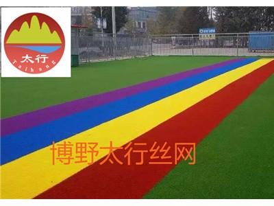 泰州草坪网制造商人造草坪施工方案