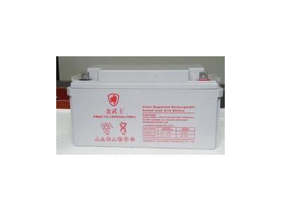 金武士蓄电池PH12V65AH 12-65AH免维护铅酸