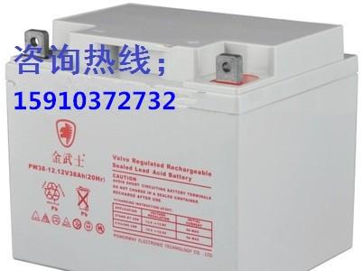 金武士12V38AH UPS不间断电源蓄电池12-38AH