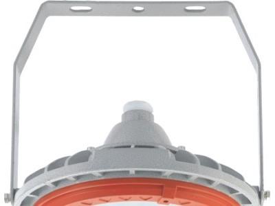 BZD180-098防爆LED照明灯