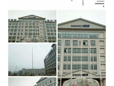 涡阳县旗杆厂不锈钢锥形旗杆旗杆旗帜厂家