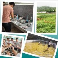 负责策划的又在找武汉国庆节推荐哪里好了,把眼睛盯着乐农山庄
