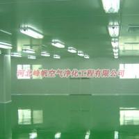 河北保定廠房凈化彩鋼板工程通風凈化工程施工