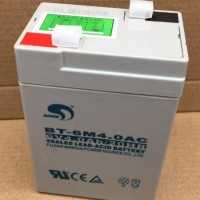 原装赛特BT6M4AC 6V4AH电子吊秤玩具车专用蓄电池