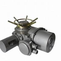 特供DZW30-24-A00-WK电动执行器