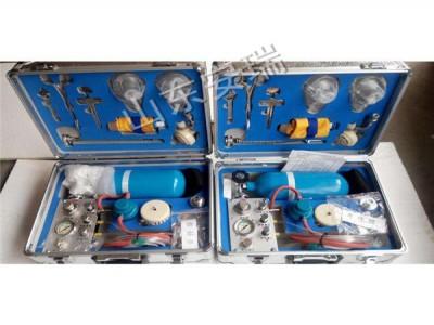 山东MZS-30矿用自动苏生器报价 矿用急救装置厂家