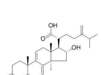 猪苓酸C,CAS:465-18-9|中药对照品