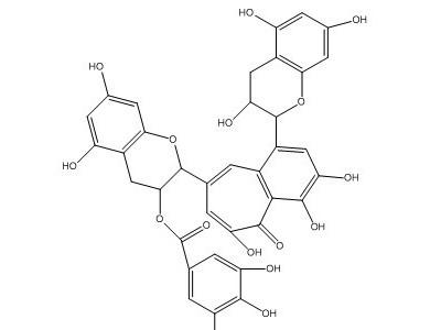 茶黄素-3-没食子酸酯|CAS:30462-34-1