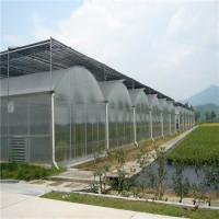 阳光板大棚温室造价 阳光板温室工程设计