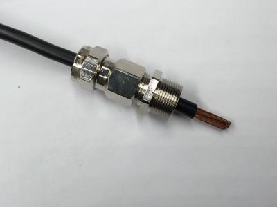 防爆双密封铠装电缆填料函G1/2